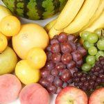 果物の進化