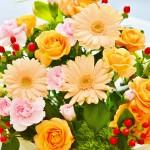 お花をいただきました
